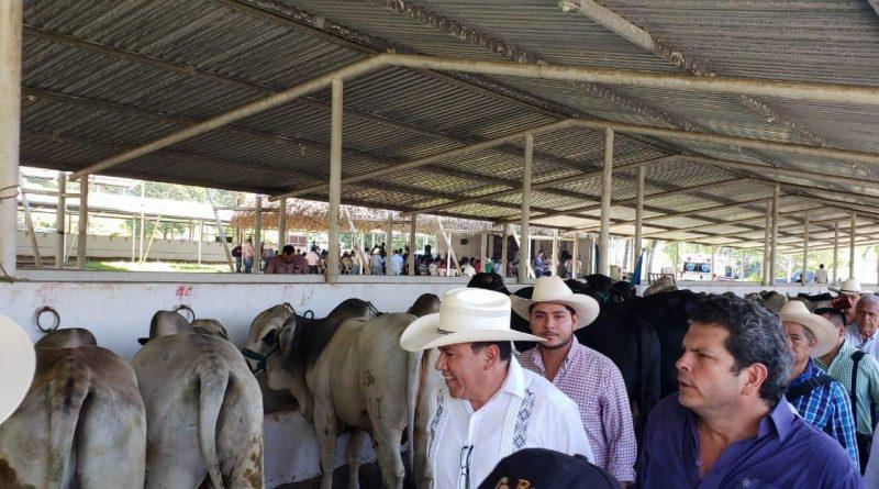 Jalisco, Campeche y Chiapas avanzan hacia una ganadería sustentable